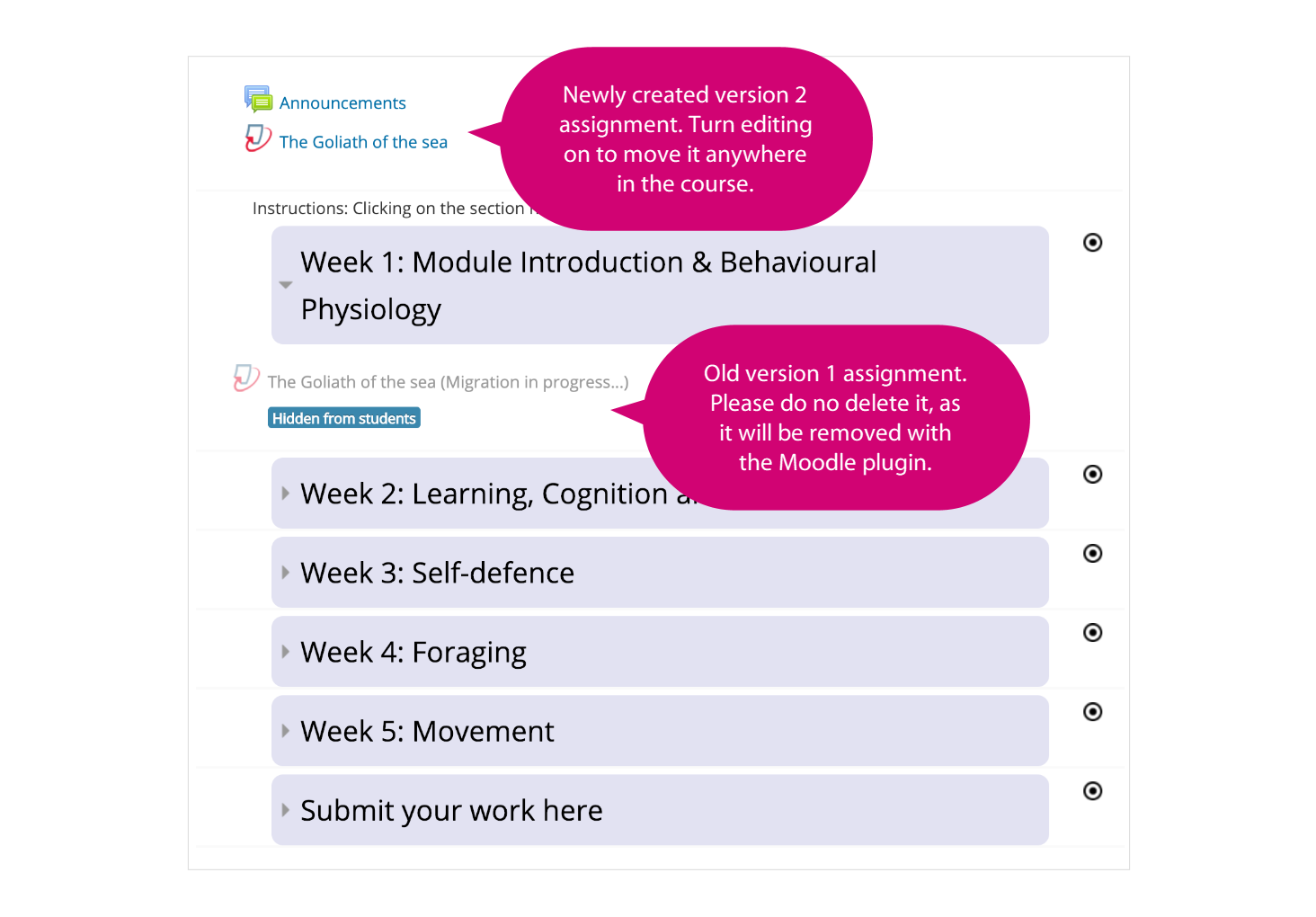 Screenshot of the homepage of a Moodle course which shows the newly migrated Turnitin assignment at the top and the original assignment with explanation in two pink speech bubbles.