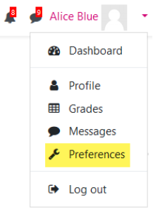 Screenshot of the user menu with the 'Preferences' option highlighted.