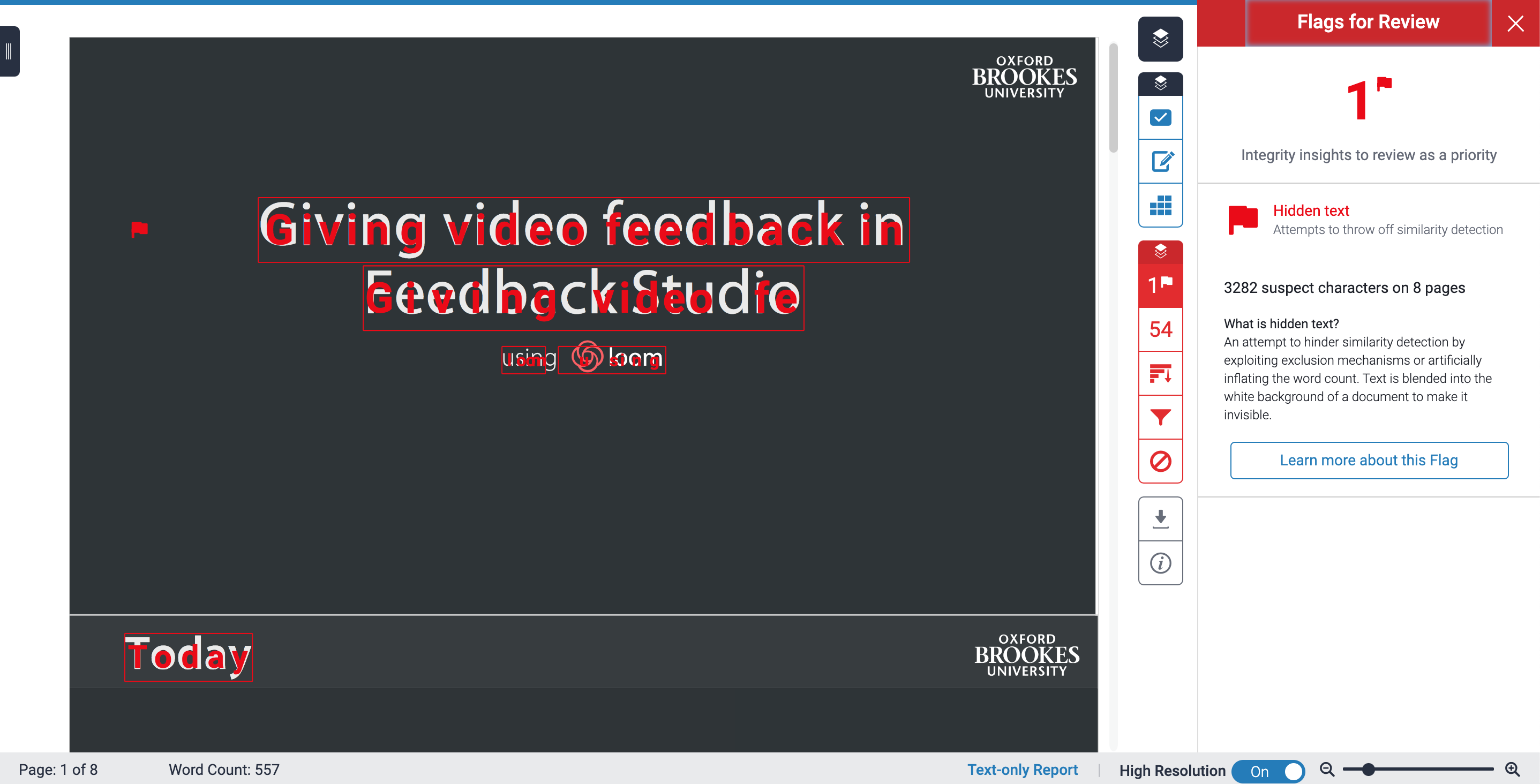 Screenshot of Feedback Studio with the submitted work with the highlighted hidden text on the left-hand side and the explanation flag on the right.