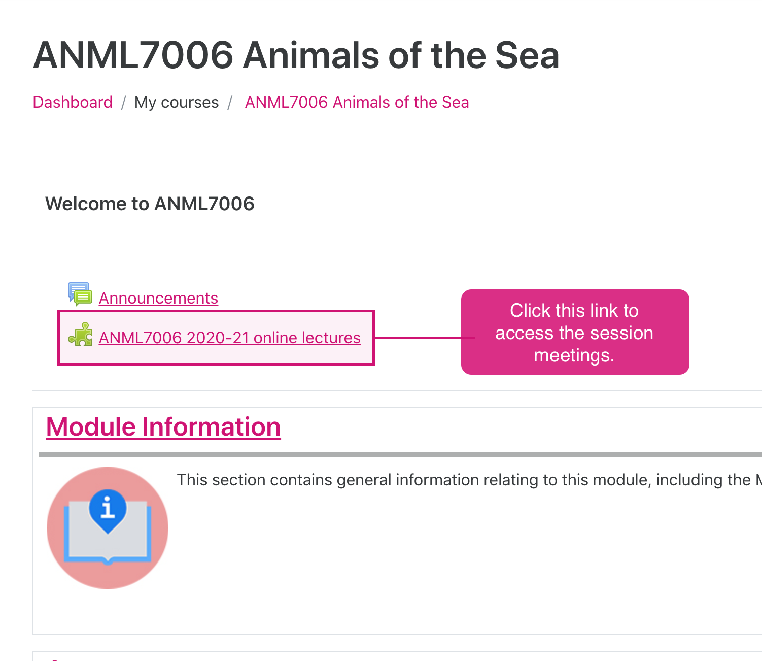"Moodle screenshot that show the Zoom activity link highlight in pink in the course page and a bubble icon that reads ""click this link to access the session meetings""."