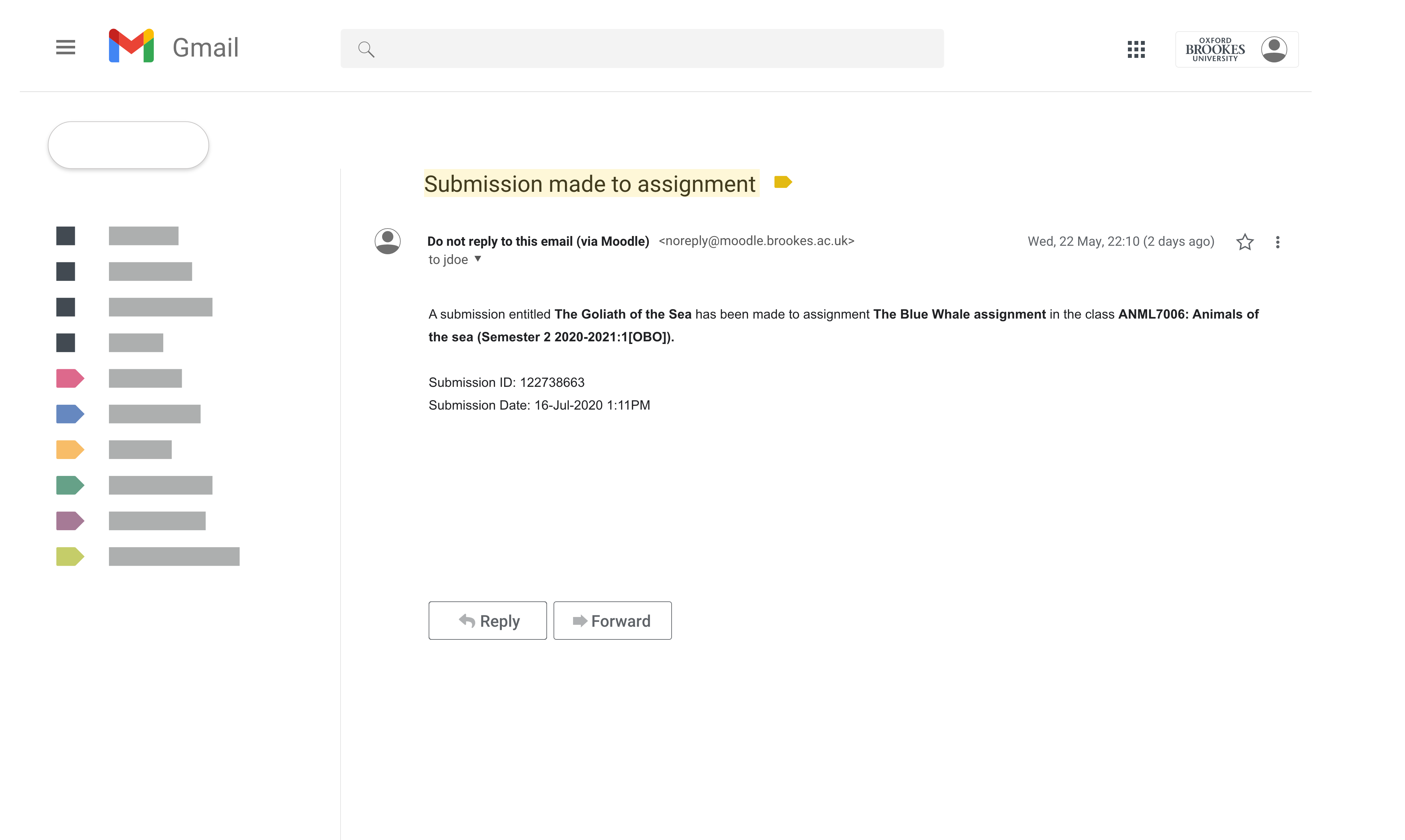 """Gmail screenshot that shows an example of an email with a subject line highlighted in yellow that reads """"Submission made to assignment"""" and body text that reads """"A submission entitled The Goliath of the Sea has been made to assignment The Blue Whale assignment in the class ANML7006: Animals of the sea (Semester 2 2020-2021:1[OBO])""""."""